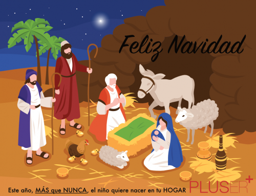 Feliz Navidad y próspero año 2021!!